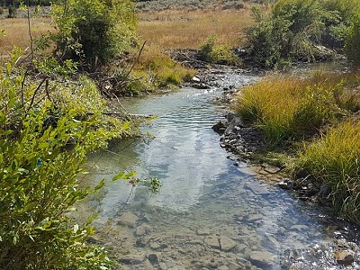 Paris Creek Restoration of Bonneville Cutthroat Trout